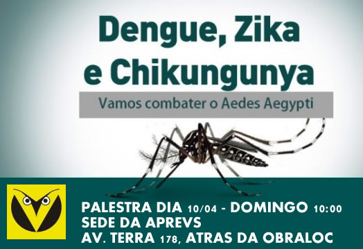 palestra aedes